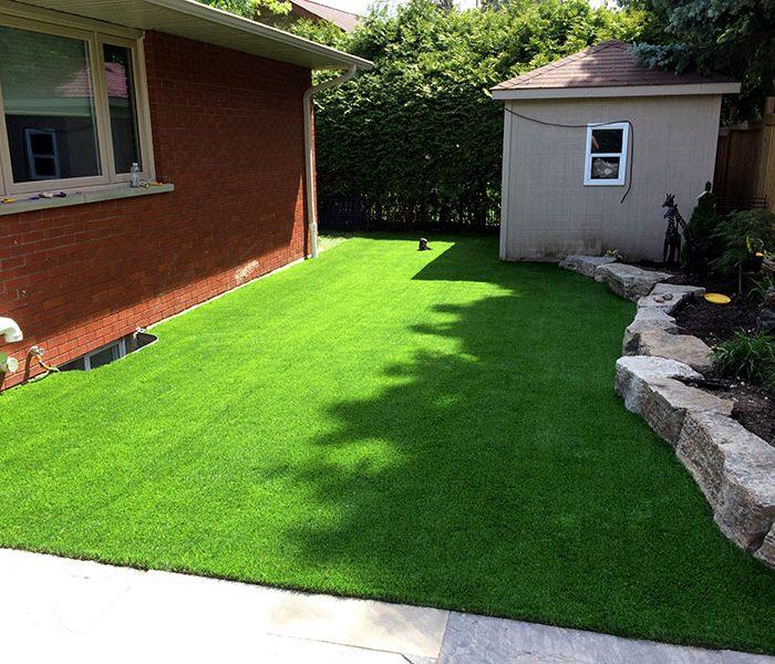 Backyard-turf-1
