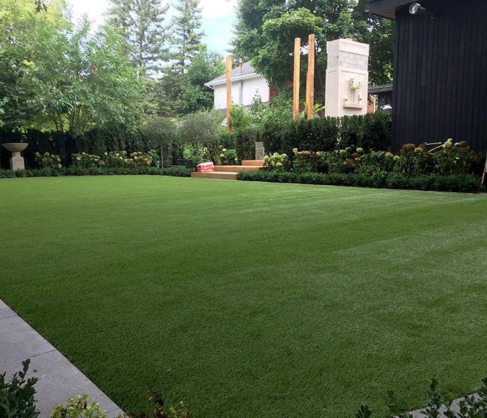 Backyard-turf-4